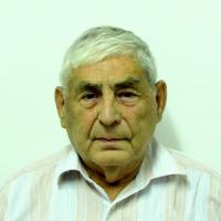 Менис Давид